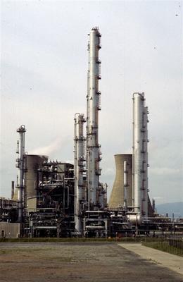 P52252