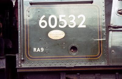 P55061