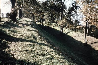 "P02169; ""Antonine Wall, Callendar Park"""