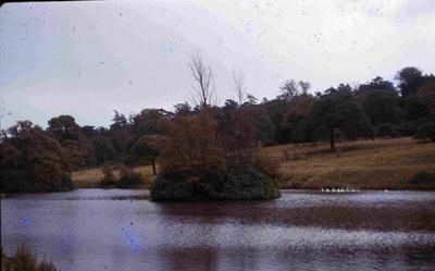 P60085; Callendar Loch