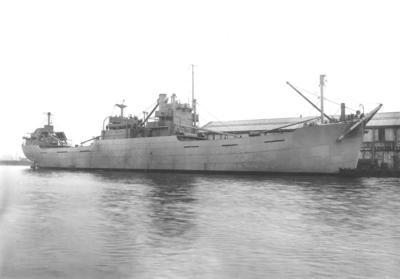P14524