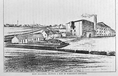 """P15084; """"Main Maltings, Showing a Row of Workmen's Cottages."""""""