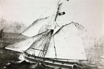 "P05721; Copy of painting of ""Nestor"""