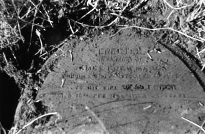 P05507; Gravestone of James Frew Mason & Jean (?) Forgie, Corbiehall Cemetery, Bo'ness.