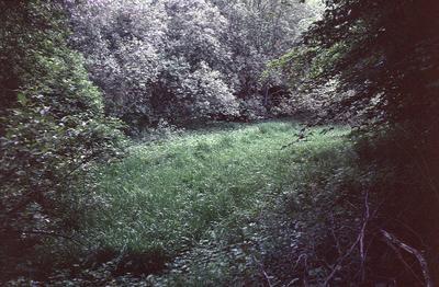 P05778; Muiravonside Estate