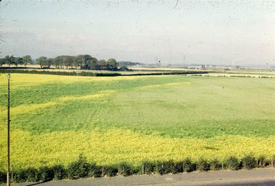 P06104; SGS Fairchild, Grangemouth Rd., Middlefield, Falkirk
