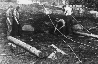 P06835; Timber workers with circular saws and other tools