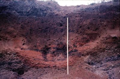 P04141; Firepit, Camelon Fort