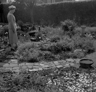 P37876; Sheona Munn, Garden, Jackson Avenue, Grangemouth