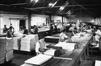 P00911; Counting and packing, Carrongrove Mill, Denny