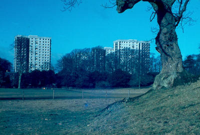 P01211; High Flats, Callendar Park