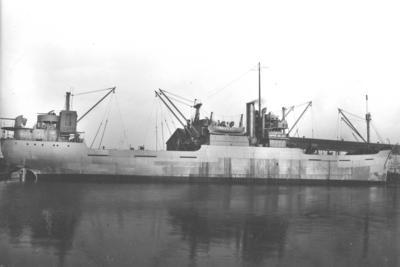 P14528