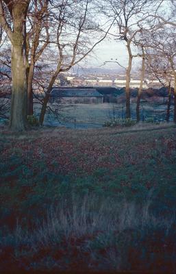 P04142; Watling Lodge fortlet