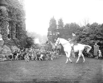 P32425; Hunt with hounds.