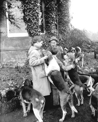 P32426; Hunt with hounds.