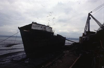P03452
