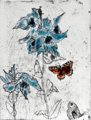 """2007-022-002; print; """"Meconopsis and Butterflies"""""""