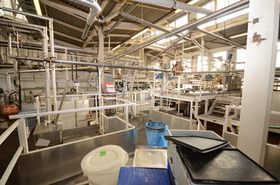 P43843; Boiling Shop in McCowan's Factory, Stenhousemuir