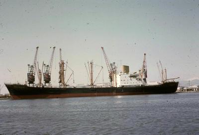 P44654