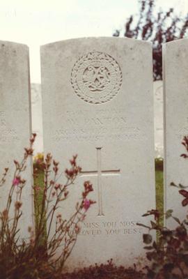 P42203; Gravestone of Private William Paxton