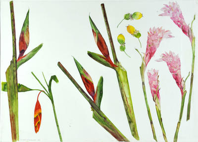 """2005-016-002; painting: """"Heliconia, passion fruit and ginger plant"""""""