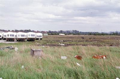 P46517