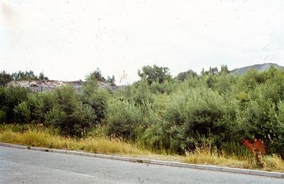 P48297