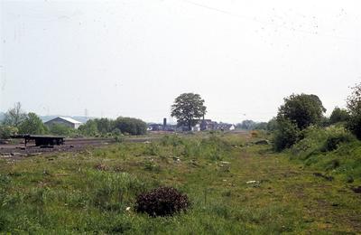 P49429