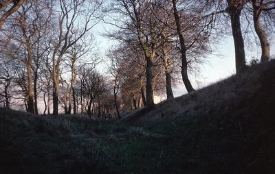 P04144; Watling Lodge fortlet