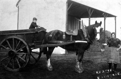 P02304; Box cart, Little Kerse farm, Polmont