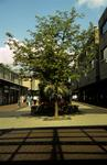 LaPorte Precinct, Grangemouth Town Centre