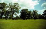 Children playing in playpark at Zetland Park