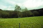 Roughcastle Opencast Site from Bonnyhill Road