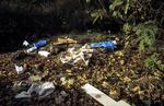 Rubbish dumped at Nobel site, Reddingmuirhead