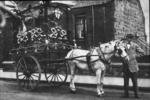 Horse (Hector) pulling decorated cart for Bo'ness Fair