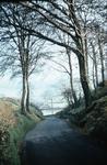 Smiddy Brae, Beancross, Falkirk