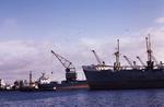 MV Elena M, Grange Dock, Grangemouth Docks