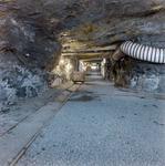 Birkhill Clay Mine