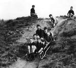 Children sledging down hill