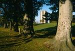 High Flats, Callendar Park, through trees