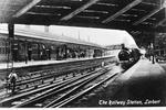 """The Railway Station, Larbert"""