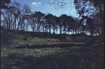 Site of Strathavon Mill