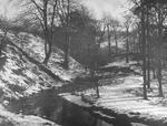 """Winter in the Glen"""