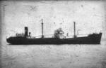 SS S.N.C.F.I.