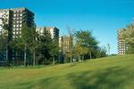Callendar Estate and high flats