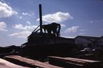 Yard, steam boiler and building, J Jones & Sons Ltd.Foundry Loan, Larbert.