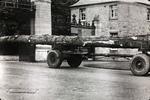 Felled tree on lorry