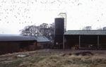 Grain tower, barn and byre, Boagstown Farm, Avonbridge