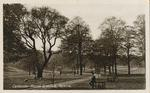 Callendar Park.