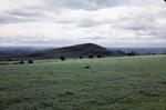 Myot hill